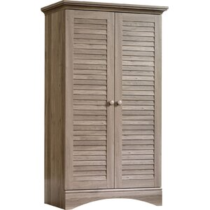 Pinellas 2 Door Storage Accent Cabinet