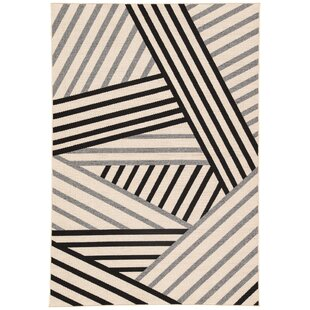 Ace Hand-Knotted Black/Gray Indoor/Outdoor Area Rug By Wrought Studio