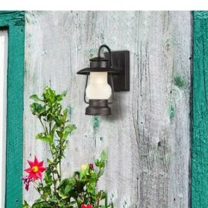 Look for Caratunk 1-Light Outdoor Wall Lantern By Trent Austin Design