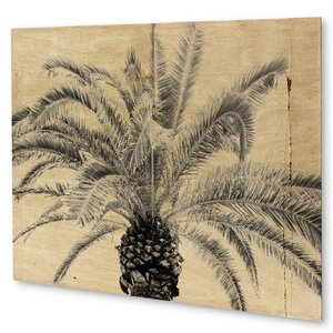 'Vintage Palm Tree' Graphic Art on Plaque by KAVKA DESIGNS