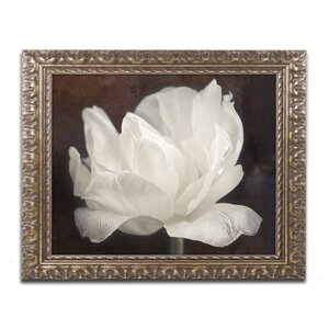 White Tulip III by Cora Niele Framed Photographic Print by Trademark Fine Art