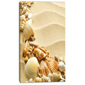'Seashell Heap on Sand' Photographic Print on Wrapped Canvas by Design Art