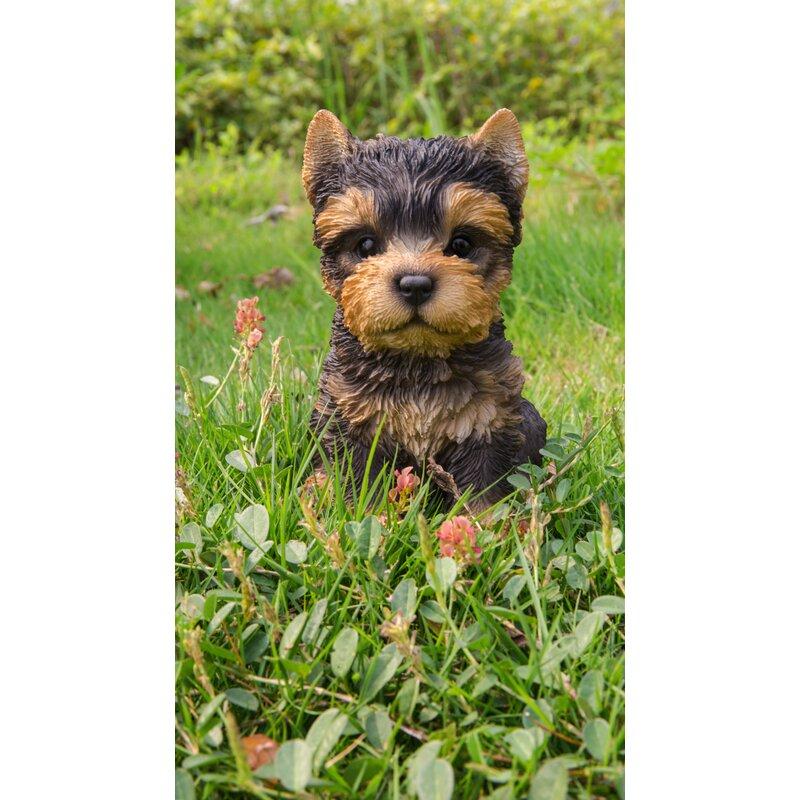 Hi Line Gift Ltd Sitting Yorkshire Terrier Puppy Statue Reviews