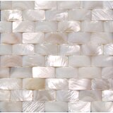 """2"""" x 2"""" Natural Shell Decorative Tile Insert in White (Set of 25)"""