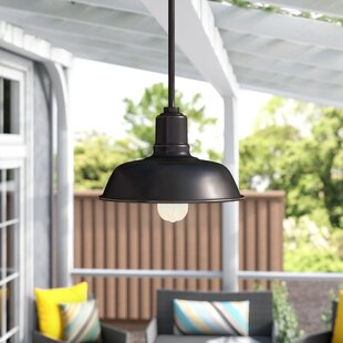 Affordable Cheng 1-Light Outdoor Pendant By Ebern Designs