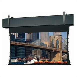 Professional Electrol Grey Electric Projection Screen