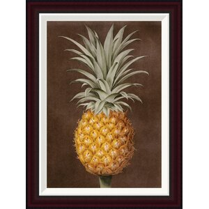 Pineapple by George Brookshaw Framed Painting Print by Global Gallery