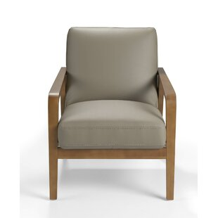 Vaccine Leather Upholstered Armchair ...