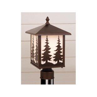 Josefina Tree Outdoor 1-Light Lantern Head by Loon Peak