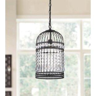 Bird cage pendant light wayfair annemarie bird cage 1 light foyer pendant mozeypictures Image collections