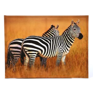 Plains Zebras Photographic Print on Wrapped Canvas by Oriental Furniture