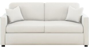 Denice Sofa by DarHome Co