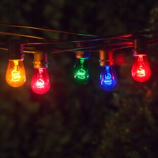 Best Reviews Globe String Lights By Wintergreen Lighting