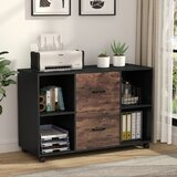 17 Stories Bester 2 Drawer Mobile Lateral Filing Cabinet Reviews Wayfair