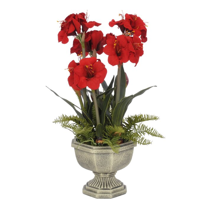 House of silk flowers artificial amaryllis in urn reviews wayfair artificial amaryllis in urn mightylinksfo
