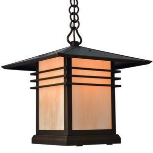 Sharp 1-Light Outdoor Hanging Lantern By Loon Peak Outdoor Lighting