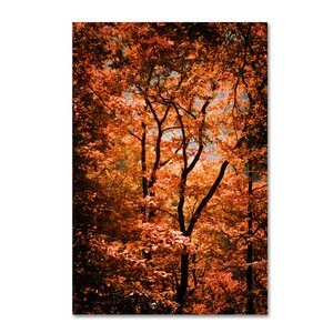 'Autumn Whispers' by Philippe Sainte-Laudy Photographic Print on Wrapped Canvas by Trademark Fine Art