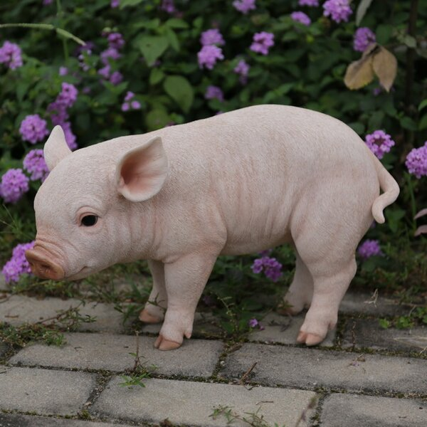 hi line gift ltd standing baby pig statue reviews wayfair