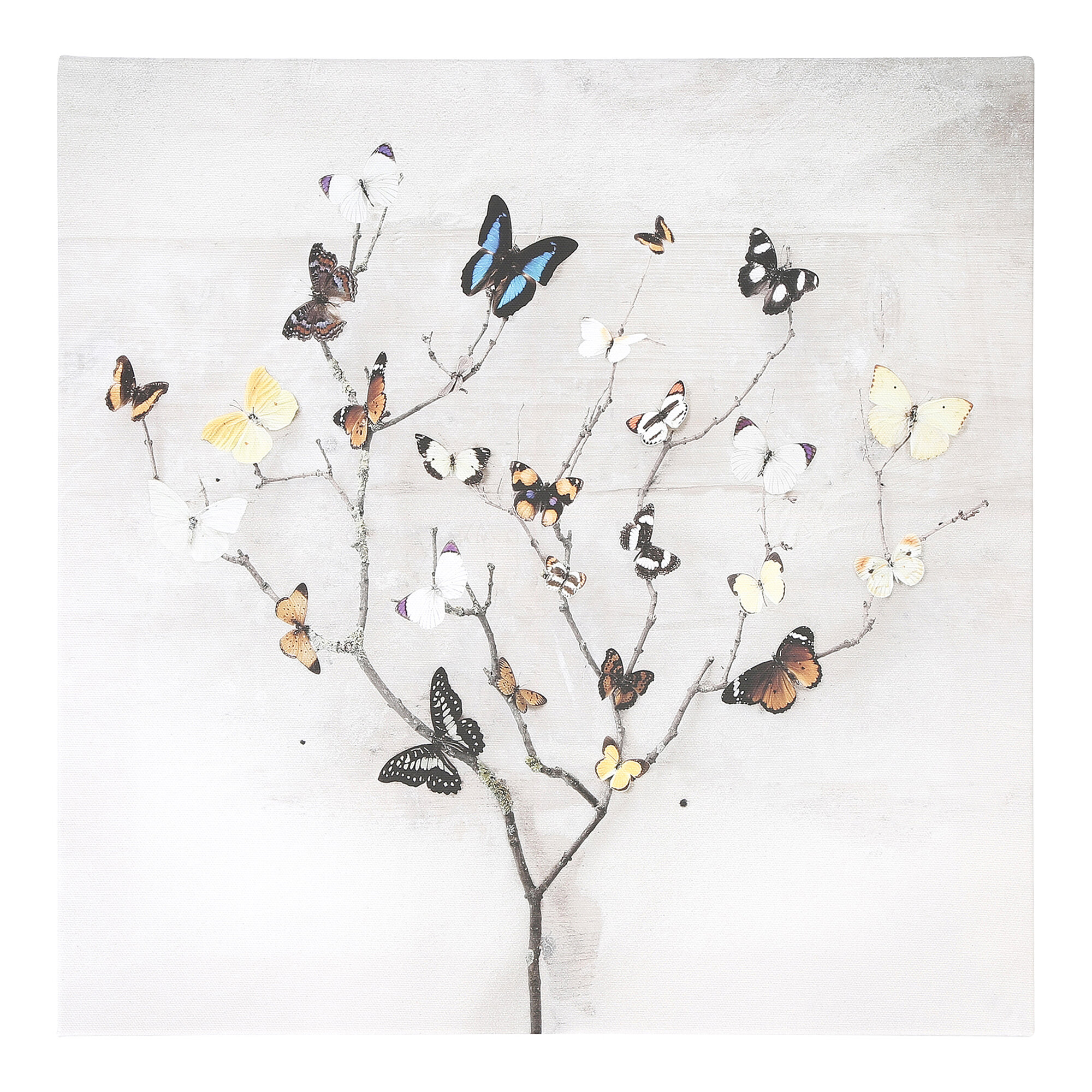 17 Stories Tree Of Butterflies Photographic Print On Canvas Reviews Wayfair Co Uk