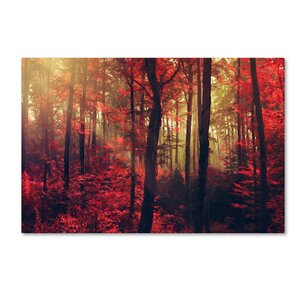 'Fire Dance' by Philippe Sainte-Laudy Photographic Print on Wrapped Canvas by Trademark Fine Art