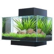 Aquariums & Bowls