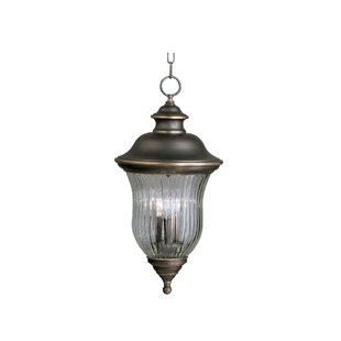 Affordable Barrowbrook 3-Light Outdoor Hanging Lantern By Astoria Grand