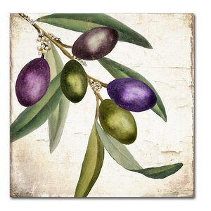 'Olive Branch I' by Color Bakery Painting Print on Wrapped Canvas by Trademark Fine Art