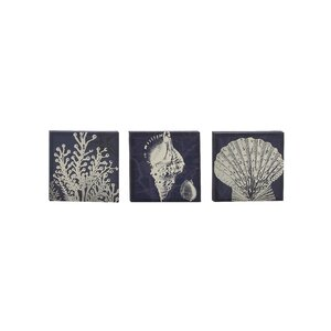 3 Piece Graphic Art on Canvas Set by Cole & Grey