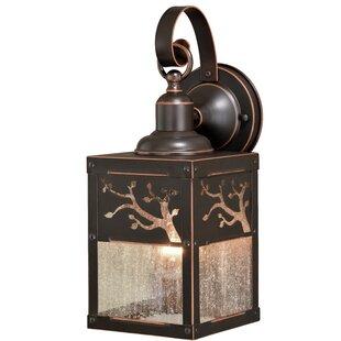 Online Reviews Baynham Outdoor Wall Lantern By Winston Porter