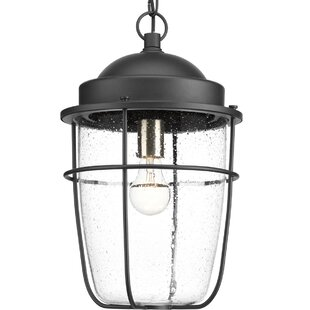 Bargain Kearney 1-Light Outdoor Hanging Lantern By Breakwater Bay