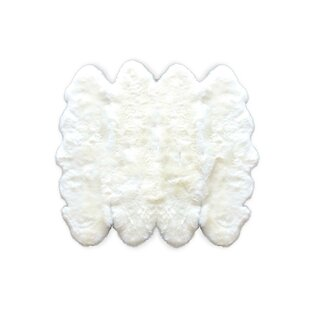 Where buy  Twickenham New Zealand Sheepskin White Area Rug By Everly Quinn