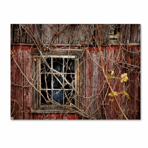 Old Barn Window by Lois Bryan Photographic Print on Wrapped Canvas by Trademark Fine Art