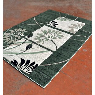 Affordable Price Light Green/Black Area Rug ByRug Tycoon