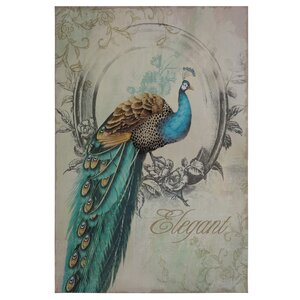 'Peacock Poise I' Graphic Art on Wrapped Canvas by Ophelia & Co.
