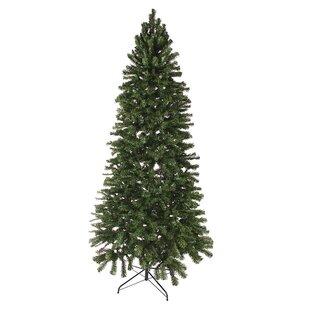 Unlit Christmas Trees You'll Love | Wayfair