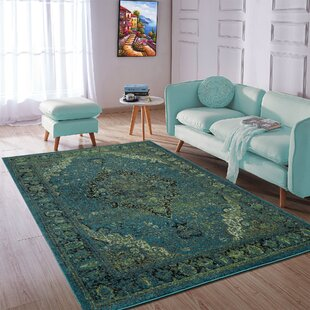 Adrianne Blue Green Area Rug