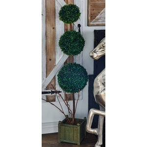 Boxwood Ball Topiary in Planter