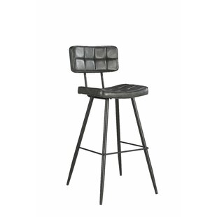 Alvarado 26 Bar Stool (Set of 2) By Williston Forge