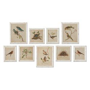 Aviary Bird & Nest Habitat 9 Piece Framed Graphic Art Set by One Allium Way