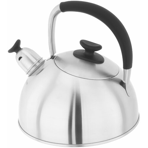 Casstel 2 L Stainless Steel Whistling Stove Top Kettle Stell