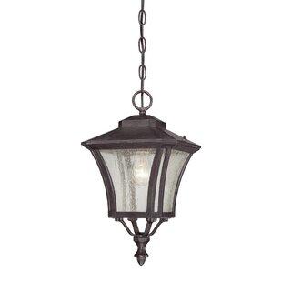 Read Reviews Herald 1-Light Outdoor Hanging Lantern By Bloomsbury Market