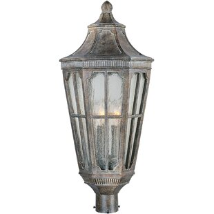 Looking for Nussbaum Outdoor 3-Light Lantern Head By Darby Home Co