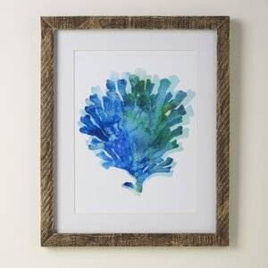 Coral Tie-Dyed Framed Print by Birch Lane™