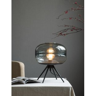 Blown glass table lamp wayfair search results for blown glass table lamp mozeypictures Gallery