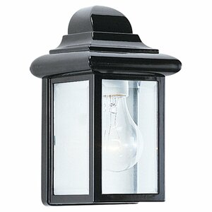 Retha 1-Light Outdoor Sconce