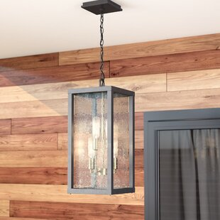 Affordable Price Anguiano 4-Light Outdoor Pendant By Brayden Studio
