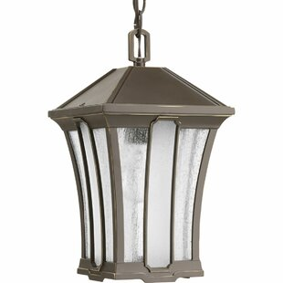 Reviews Cerre 1-Light Outdoor Hanging Lantern By Loon Peak
