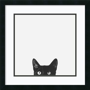 'Curiosity' Framed Photographic Print by Mercury Row