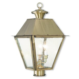 Cynda Outdoor 3-Light Lantern Head By Darby Home Co Outdoor Lighting