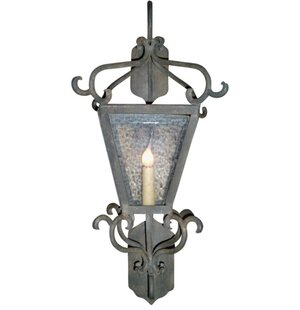 Affordable Siena 1-Light Outdoor Wall Lantern By Laura Lee Designs